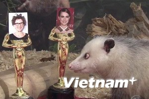 Chuột lác Heidi dự Oscars