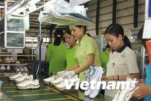 EU gia hạn áp thuế giày Việt Nam thêm 15 tháng