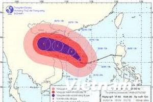 15 tàu và 207 người trú bão tại khu vực Hoàng Sa