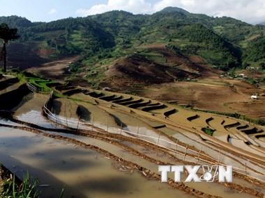 Hình ảnh miền núi tỉnh Lai Châu nhộn nhịp vào mùa nước đổ