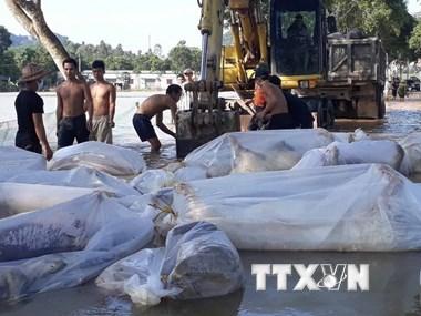Bộ Y tế cấp thuốc và phao cứu sinh cho các tỉnh ảnh hưởng lũ lụt