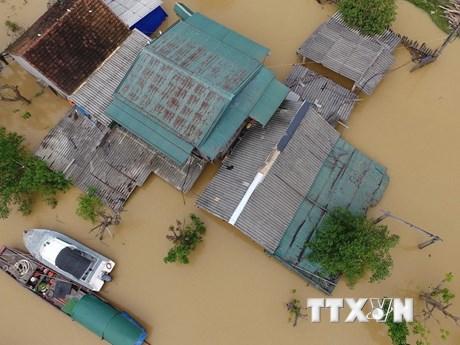 Nước lũ sông Lam nhấn chìm nhiều xã ở Hưng Nguyên trong biển nước