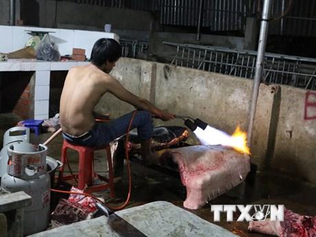 """[Photo] """"Đột nhập"""" cơ sở biến thịt lợn nái thải thành lợn rừng lai"""