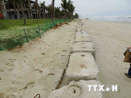[Photo] Sạt lở bờ biển dài gần 300 mét tại bãi tắm ở Đà Nẵng