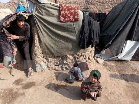 Sự thật sau ngày sinh đặc biệt của hàng nghìn người Afghanistan