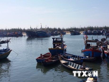 [Photo] Cảng cá bị bồi lấp, hàng loạt tàu thuyền phải nằm bờ
