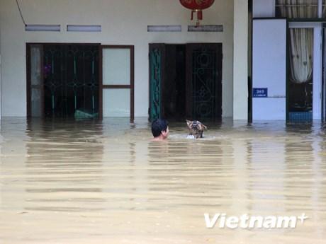 [Photo] Mưa lớn kéo dài, nhiều địa phương ở Hà Giang bị cô lập