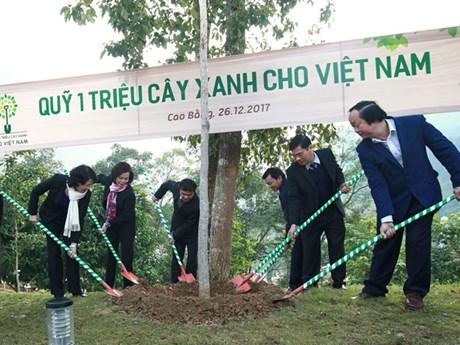 Vinamilk đưa Quỹ 1 triệu cây xanh đến với tỉnh Cao Bằng