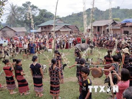[Photo] Độc đáo lễ hội nhà mồ của đồng bào Pakô ở Quảng Trị