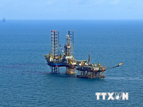 [Photo] Việt Nam tiêu thụ 355 triệu tấn dầu thô trong 30 năm qua