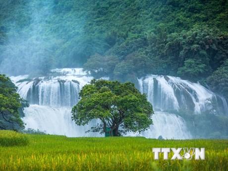 Chiêm ngưỡng thác Bản Giốc - thác nước đẹp bậc nhất Đông Nam Á