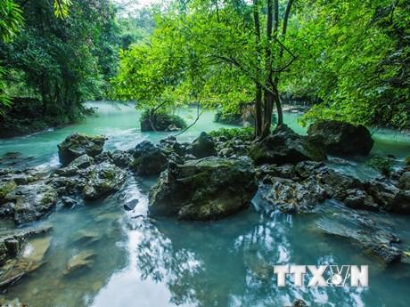 Vẻ đẹp yên bình của di tích suối Lê-nin và hang Cốc Bó