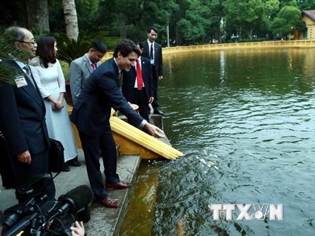 Hình ảnh Thủ tướng Canada cho cá ăn ở Khu di tích Chủ tịch Hồ Chí Minh
