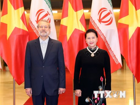 Hình ảnh Chủ tịch Quốc hội Iran thăm chính thức Việt Nam
