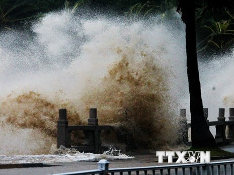 Hình ảnh tan hoang tại Trung Quốc sau khi bão Hato quét qua