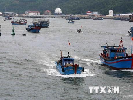 Hình ảnh tàu, thuyền vào neo đậu tránh cơn bão số 10