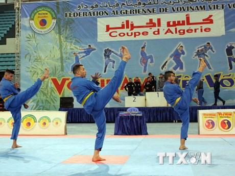 [Photo] Vòng chung kết Cúp Vovinam Việt Võ Đạo toàn Algeria