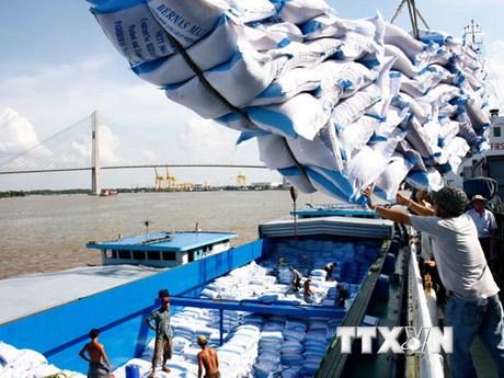 Phát triển thị trường xuất khẩu gạo: Giảm số lượng, tăng giá trị