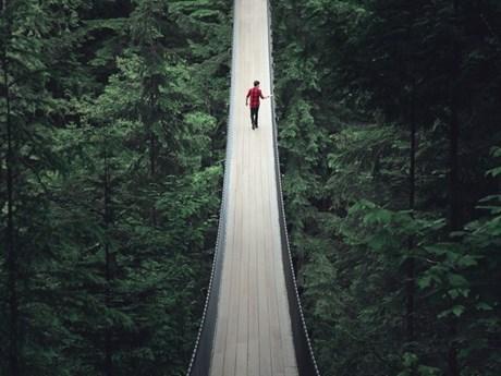 Ảnh đẹp trong tuần: Độc đáo cây cầu treo Capilano Suspension ở Canada