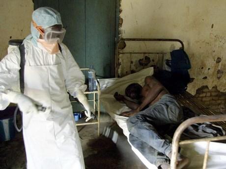Nhân loại đang đứng trước nguy cơ các loại dịch bệnh mới