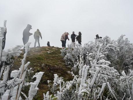 [Photo] Băng giá phủ trắng đỉnh Mẫu Sơn khiến du khách thích thú