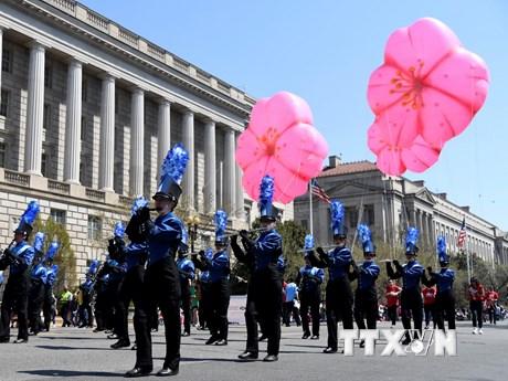 [Photo] Tưng bừng Lễ diễu hành hoa anh đào thường niên tại Mỹ