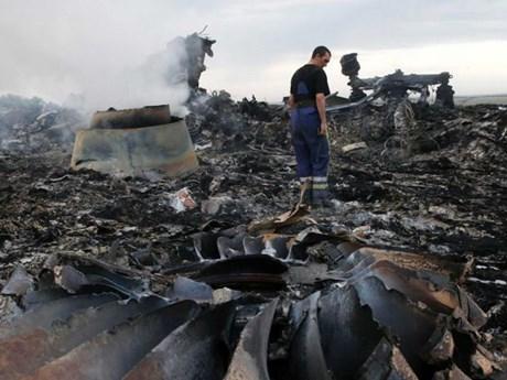 Điều tra quốc tế: Tên lửa bắn rơi MH17 là của lữ đoàn phòng không Nga