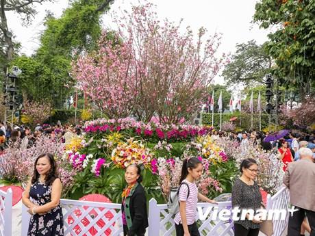 Đông nghịt người dân Thủ đô đến lễ hội hoa anh đào