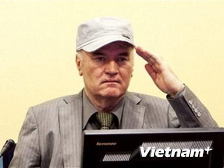 Tòa án đuổi ông Mladic
