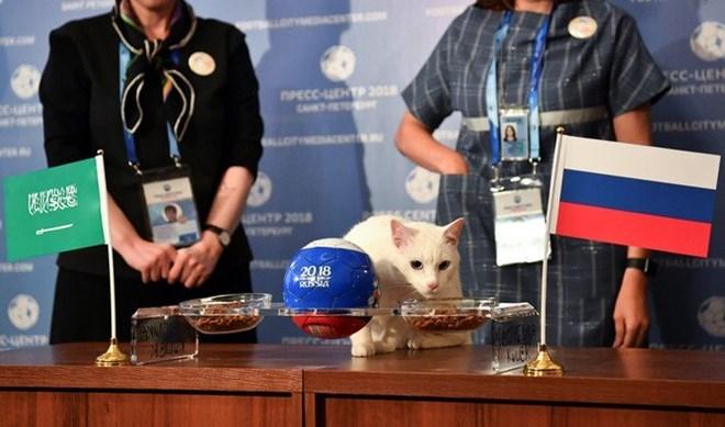 Trực tiếp Nga - Saudi Arabia 1-0: Gazinsky làm nổ tung Luzhniki - ảnh 4