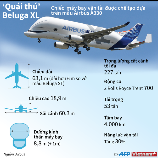 Infographics_Van_tai_co.png