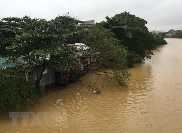 Hội người Việt tại Pháp quyên góp quỹ hỗ trợ đồng bào vùng lũ lụt
