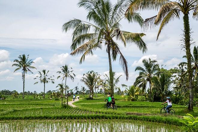 Thủ sẵn những bí kíp này trước khi muốn ăn, cầu nguyện, yêu tại Bali