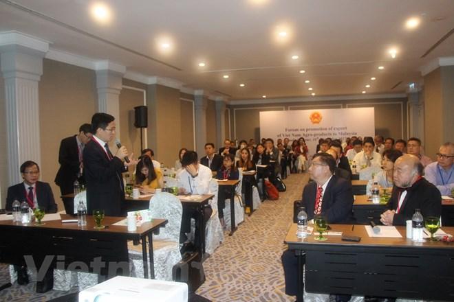 Ông Trần Văn Công trả lời các câu hỏi của các doanh nghiệp Malaysia (Ảnh: Lê Hòa/Vietnam+)
