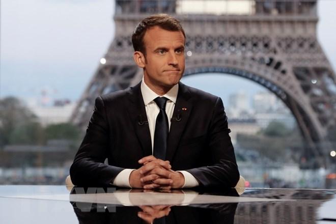 Pháp đầu tư 50 triệu euro vào các dự án cứu trợ nhân đạo tại Syria - ảnh 1