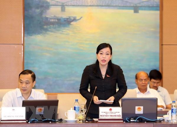 Trưởng Ban Dân nguyên của Quốc hội Nguyễn Thanh Hải trình bày báo cáo. (Ảnh: Trọng Đức/TTXVN)