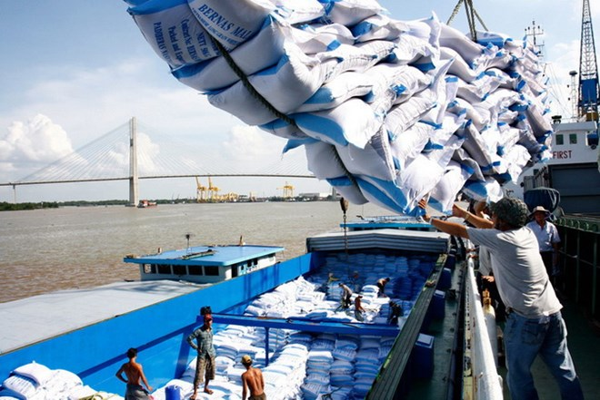 Xuất khẩu gạo của Việt Nam đã khởi sắc ngay từ quý 1