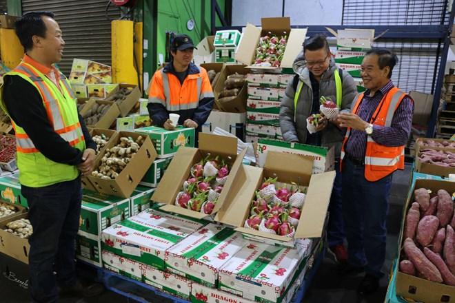 ASEAN là thị trường xuất khẩu nông sản lớn của Hàn Quốc