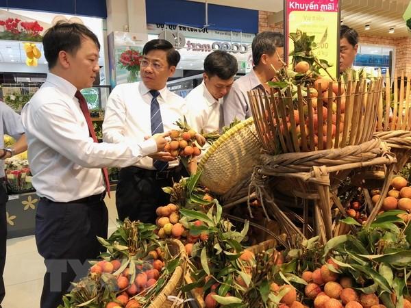 Saigon Co.op cam kết bao tiêu trái vải thiều tươi Lục Ngạn và Thanh Hà - ảnh 2