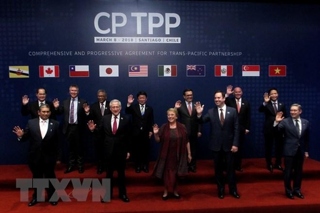 Thượng viện Mexico nỗ lực thông qua CPTPP trong tháng Tư - ảnh 1