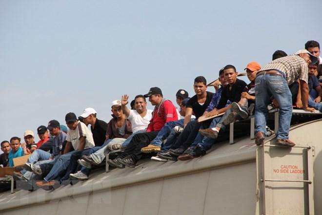 Ông Trump gây sốc, gọi người nhập cư từ Mexico là động vật - ảnh 1