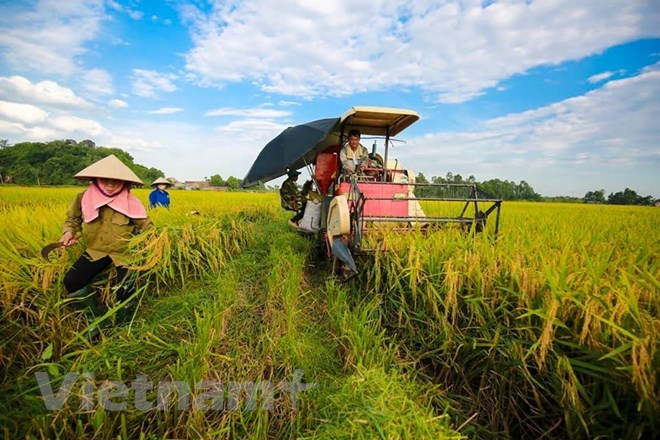 Ban hành Thông tư hỗ trợ cho vay phát triển nông nghiệp, nông thôn