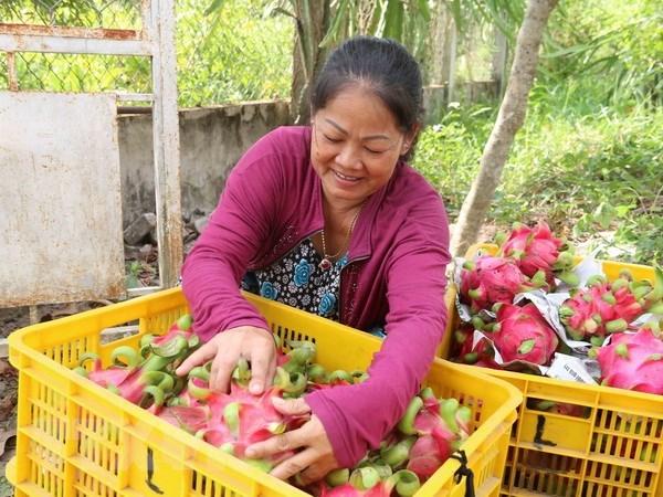 VPBank, IFC tài trợ 50 triệu USD để Tập đoàn Tân Long thu mua nông sản - ảnh 1